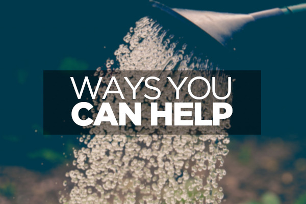 Ways you can help